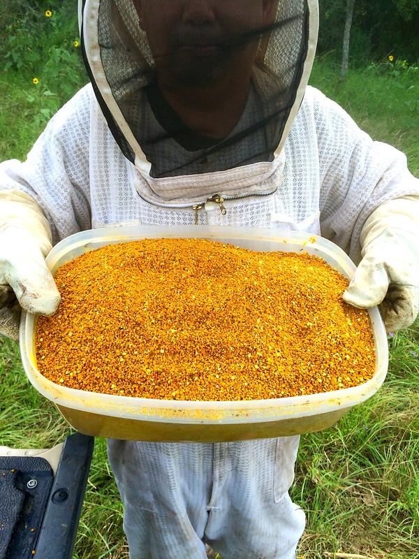 Pollen is amazing this season!