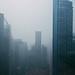 38/ 365 - Cold Singapore