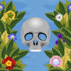 store_icon240-flori