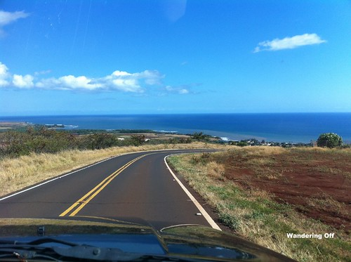 the road down from Waimea Canyon