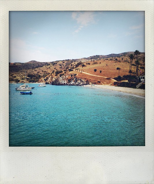 Summer in Catalina Island