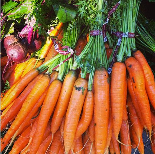 Multiple bundles of carrots at the farmer's market