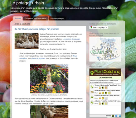 Widget en situation sur un site web