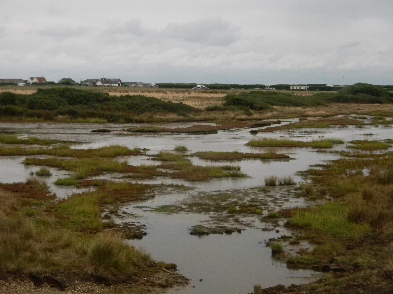Saltmarsh Chichester to West Wittering