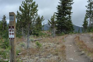 Trail 508