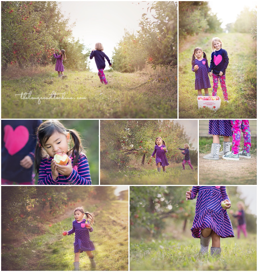 Apple Picking SACRES COLLAGE 2