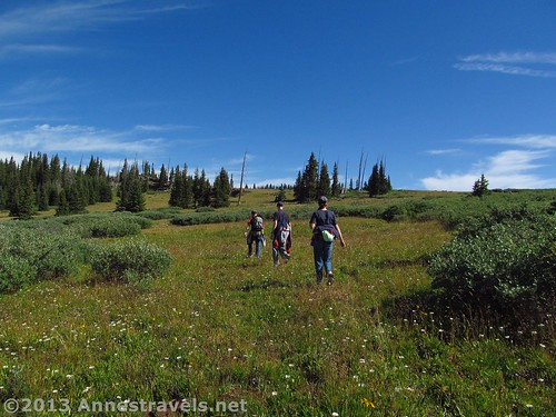 Having left the trail, several of my hiking companions ascend the meadows toward the rim of Amphitheatre Peak, Flat Tops Wilderness Area, White River National Forest, Colorado