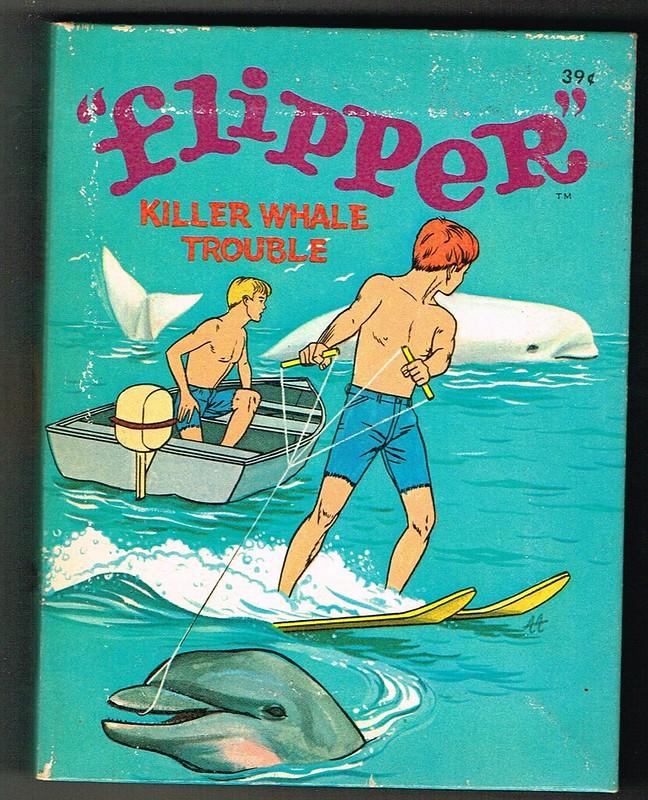 blb_flipperkillerwhale