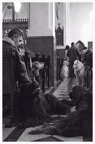 Blessing of the Animals - for the love of Dog by Wanderfull1