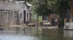 natural disaster, flood, water, river, disaster, waterway,