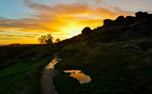 tree water grass rock sunrise landscape puddle path yorkshire boulder scenary dales otley silhouettte chevin