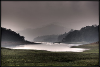 Wildlife Reserve, Periyar, India