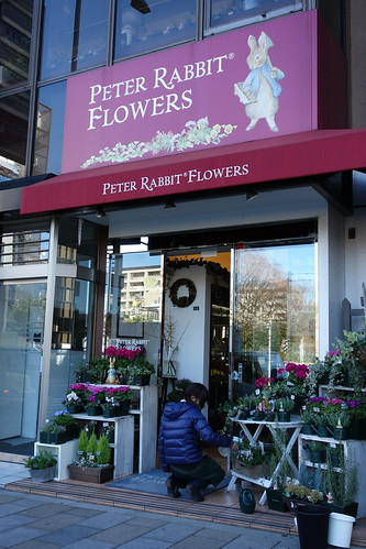 ピーターラビットの花屋さん