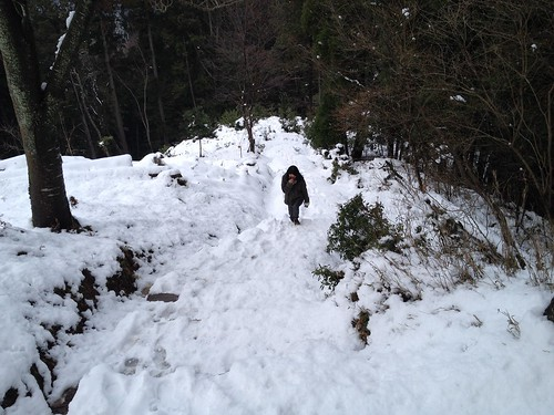 松尾山 登山道