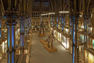 Natural History Museum Oxford