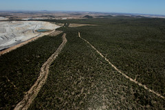 Aerials of Leard State Forest and surrounds.