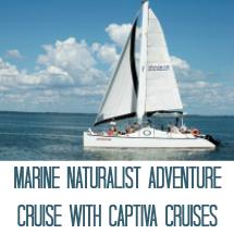 Marine Naturalist Cruise