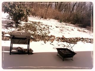 Back Yard in the mini Icestorm