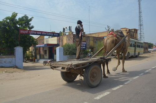 rickshawrun8