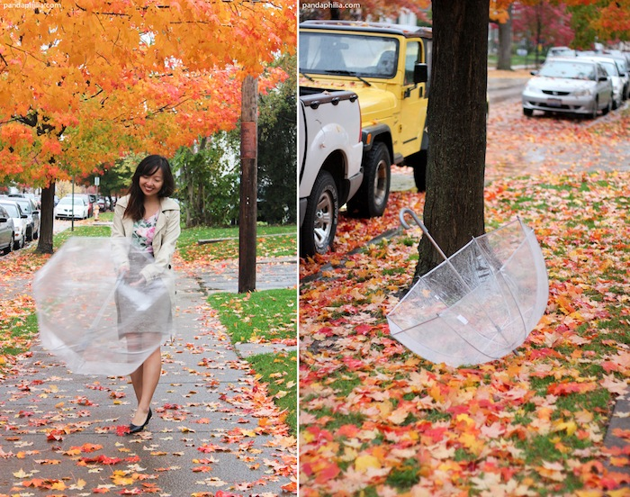 spinning clear bubble umbrella fall leaves