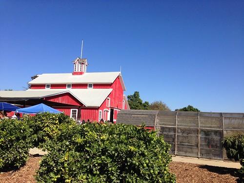 faulkner farms