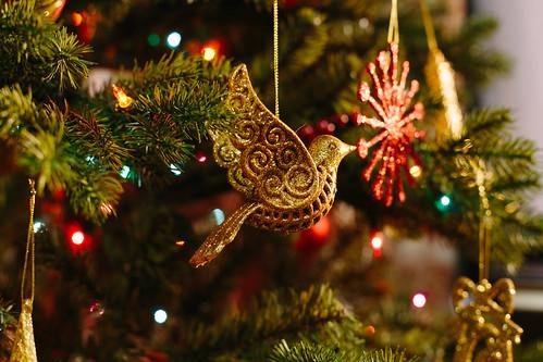 聖誕樹帶來濃濃過節氣氛。(圖片來源:Stephen Woods)