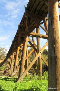 Long Gully Bridge 2013 (1)