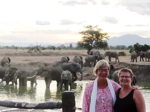 Two ladies smiling at the camera with more than 20 Elephants on the background at the hippo pool in Mikumi National Park