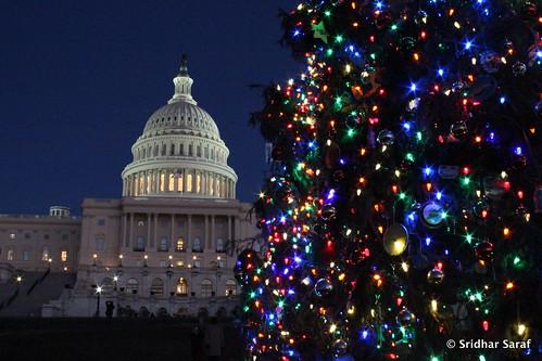 Capitol Christmas Tree Lighting, Washington DC (USA) - Dec 2013