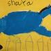 Shaya C