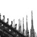 Cathedral of Milan -  Duomo B/W by Stefano Stabile