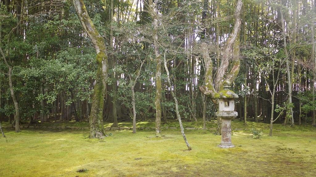 Kōtō-in Moss Garden