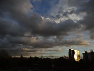 Vögel sind Wolken und Lieder