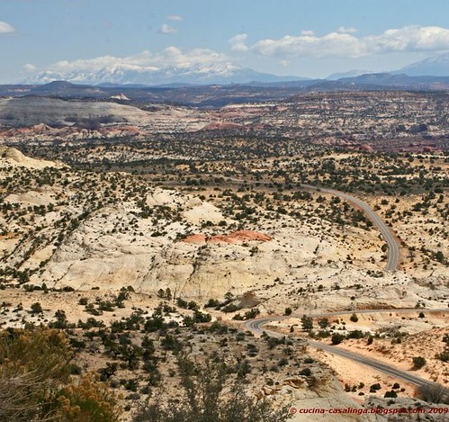 Hotels In Moab Utah That Allow Pets