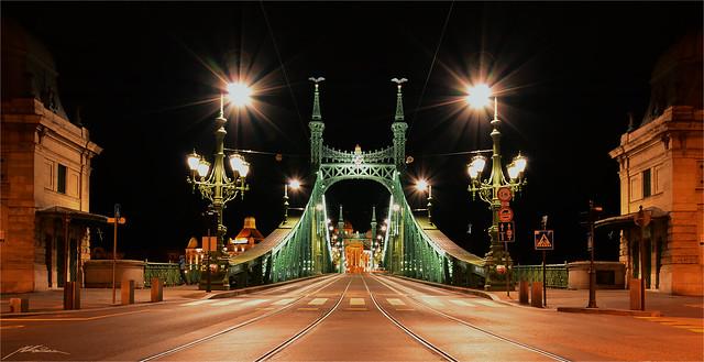 Szabadság Híd & Hotel Gellért - Danube -Budapest- (3)