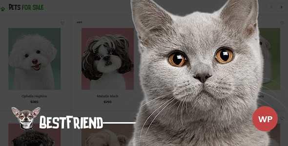 Bestfriend WordPress Theme free download
