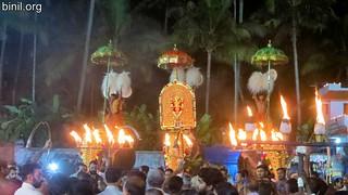 Arattupuzha Tharakkal Pooram 6