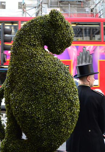 Topiary and Top Hat