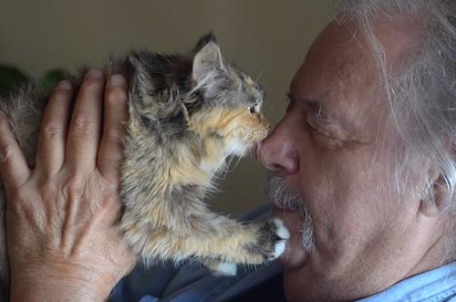 Happy Birthday, Kitten Whisperer!