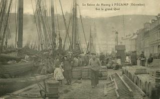 Fécamp: saison du hareng sur le Grand Quai