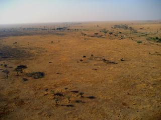 Serengeti von oben