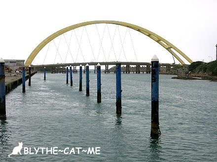 環港活海鮮 (1)