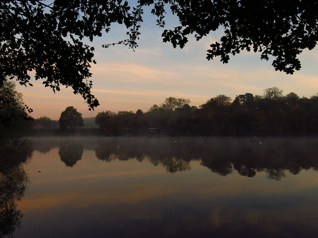 The Men's Pond at Dawn
