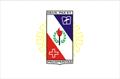 Bandeira da cidade de Coronel Fabriciano