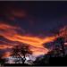 Winter Sunset by SFB579 Namaste