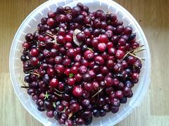 blackberry(0.0), plant(0.0), zante currant(0.0), boysenberry(0.0), pink peppercorn(1.0), berry(1.0), lingonberry jam(1.0), frutti di bosco(1.0), produce(1.0), fruit(1.0), food(1.0), cranberry(1.0),