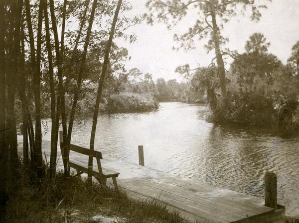 Bamboo Landing on the Estero River