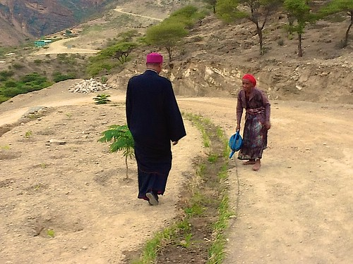Abune viewing some of the 1000+ saplings planted, which are hand watered daily!