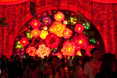 flower, event, red, mid-autumn festival,