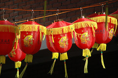lighting(0.0), flower(1.0), red(1.0), mid-autumn festival(1.0), chinese new year(1.0),